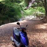 ジョグ源氏の滝公園ツーリングin交野