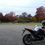 Z1000奈良公園ぶらっと紅葉ツーリング
