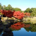 マジェスティ 名阪国道どて焼き&奈良公園紅葉ツーリングin三重