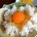 マジェスティ 野間の大ケヤキと卵かけご飯ツーリングin京都府亀岡市