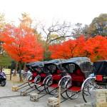 マジェスティ 紅葉の名所!!奈良公園へ紅葉ソロツーリングin奈良県奈良市